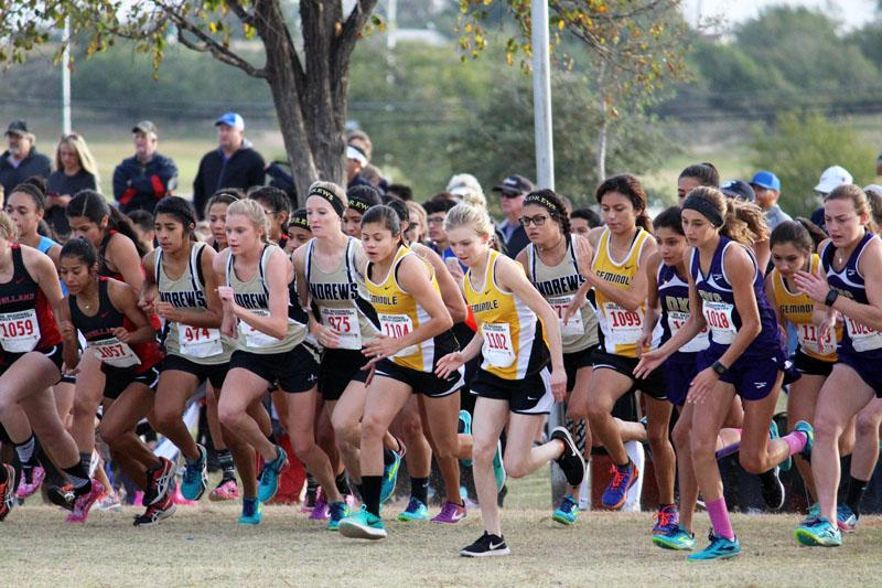 They%E2%80%99re+off--%0AThe+Maiden+cross+country+team+takes+off+at+the+start+of+the+region+race+at+Mae+Simmons+Park+in+Lubbock.+They+qualified+as+the+third+place+team+in+district.