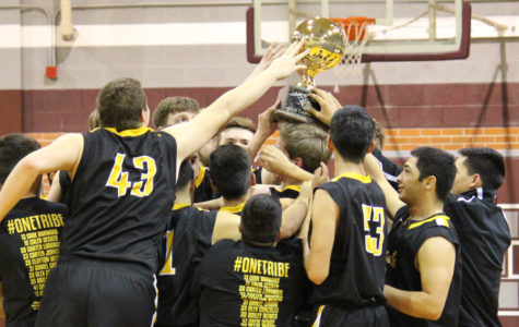 Indians to meet Lamesa in region quarterfinal