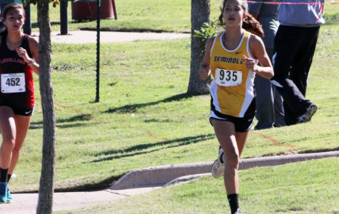 Freshman qualifies for state cross country meet