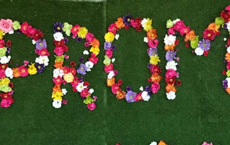 Prom displays 'Romantic Garden' theme
