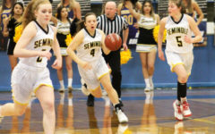 Maidens fall to Levelland in area final