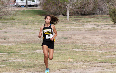One team, two individuals qualify for region cross country